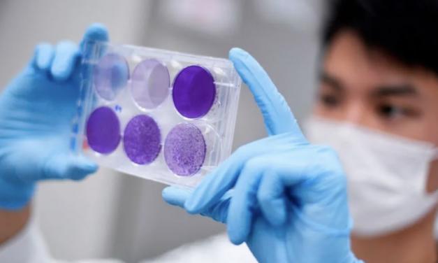 新冠病毒免疫可行吗?你会被感染两次吗?